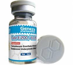 Test E 200mg / EQ 200mg (1 vial)
